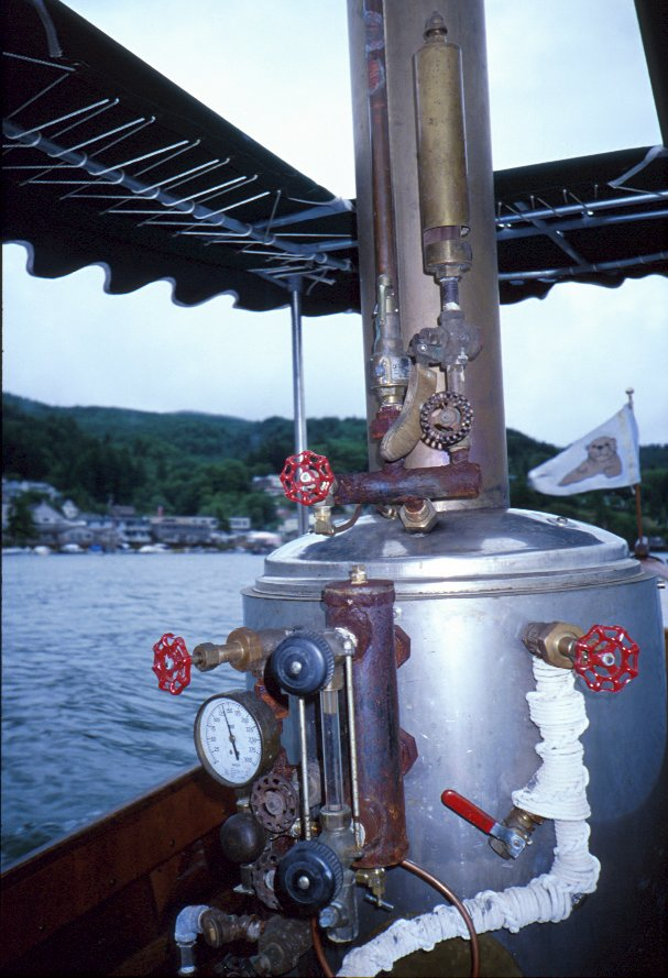Steamboat Otter - Picture 6